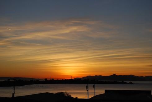 Albany,CA, December5,2008_4.53pmDSC_0512.jpg
