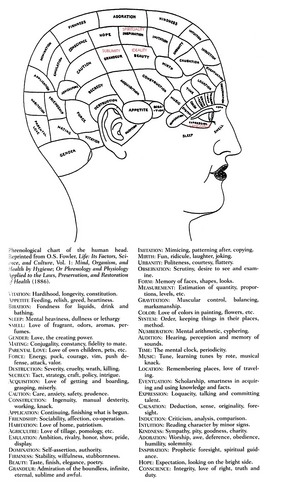 FowlerPhrenology(1886)_modified.jpg