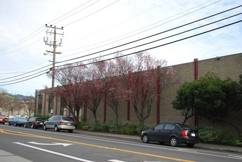 GilmanStreet,BerkeleyCA-Feb27,2009.1528.48pm.jpg
