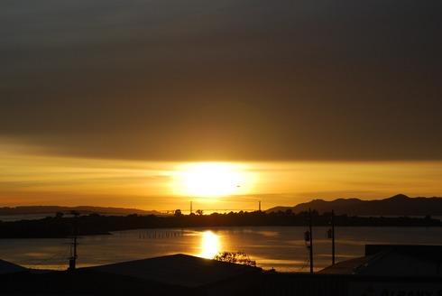 January4,2009Albany,CA1651pm.jpg
